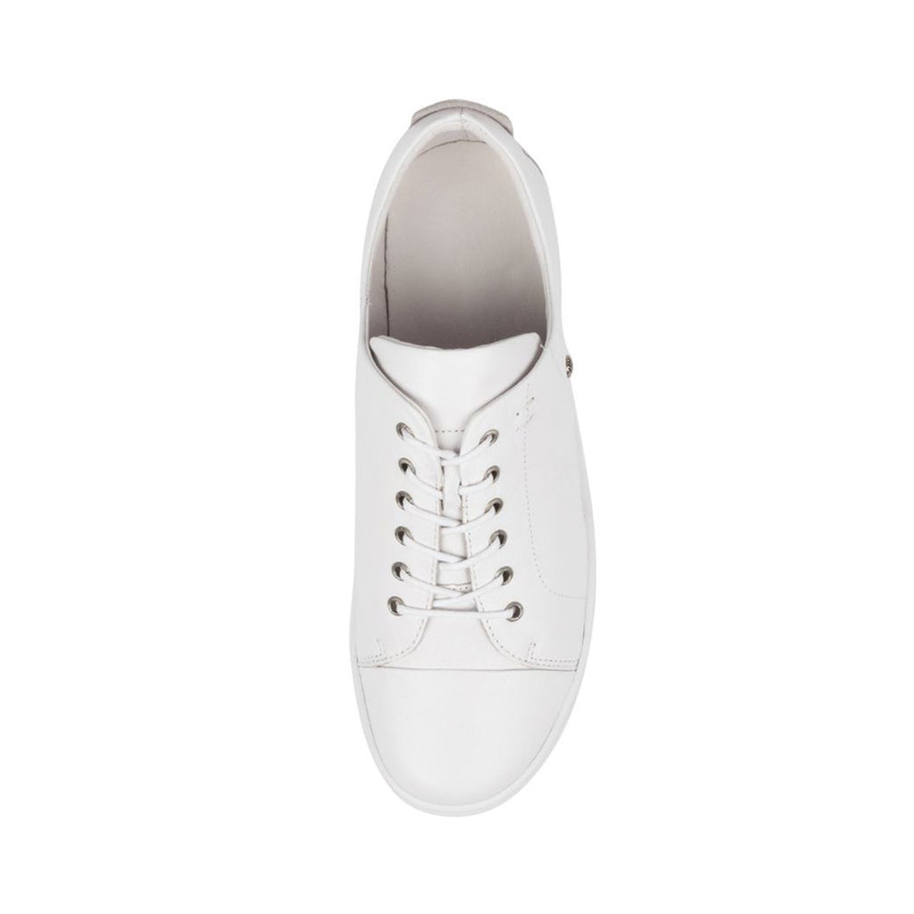 Dempsere White leather White Sole