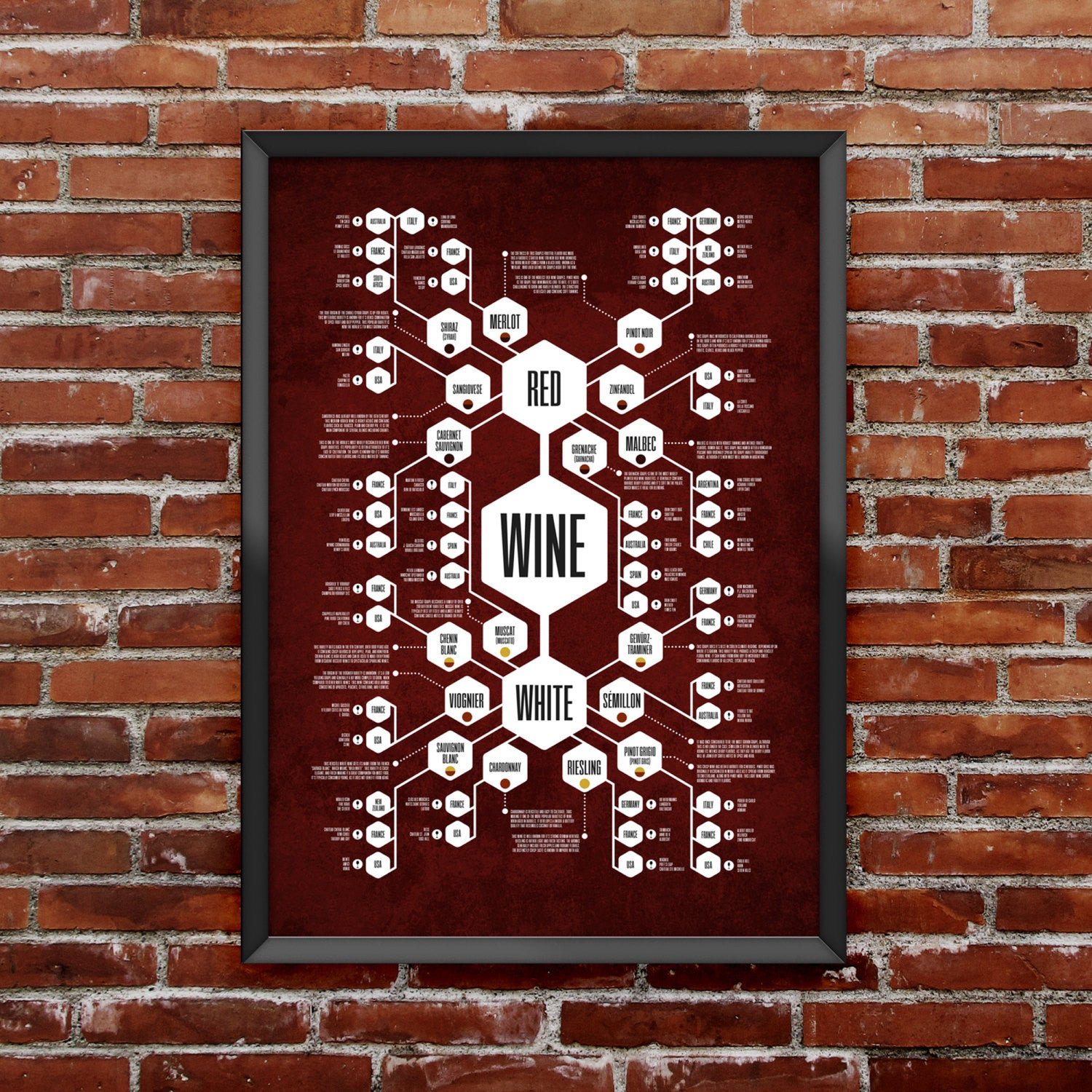 Whiskey & Wine Diagram Set