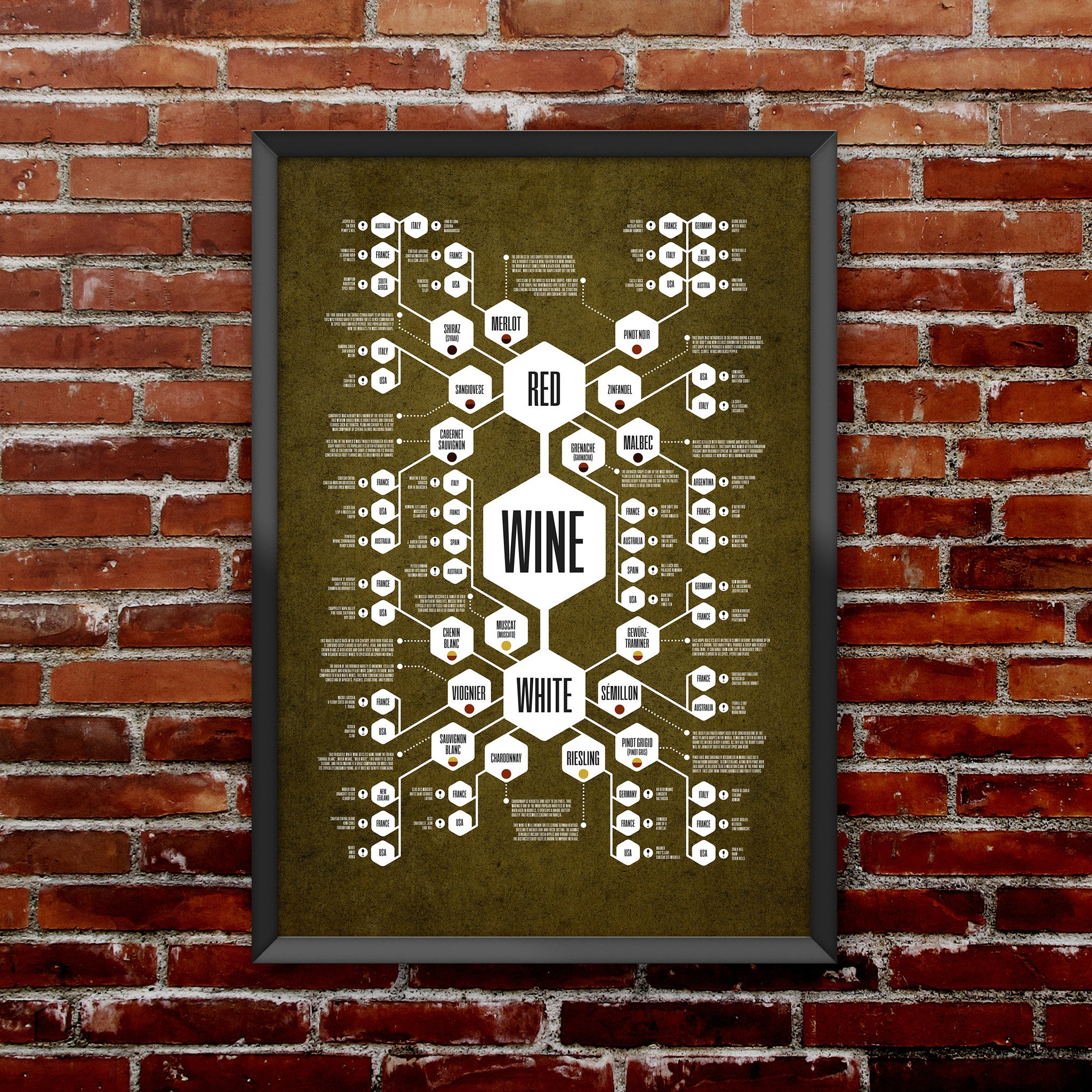 Wine Diagram Print