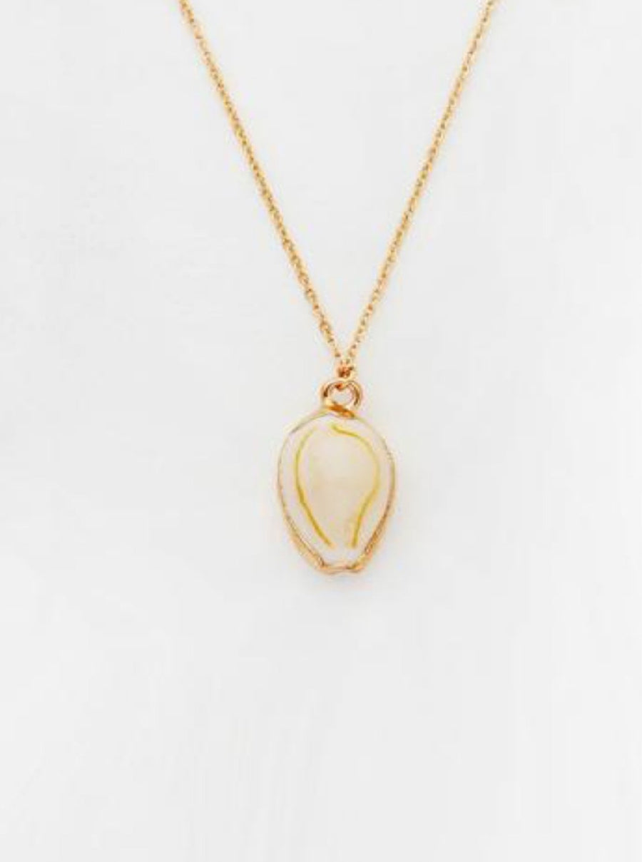 SEASHELL PENDANT AND CHAIN
