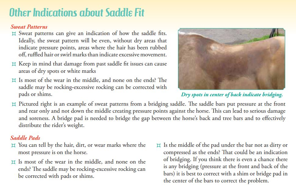 Saddle Fitting Guide Circle Y