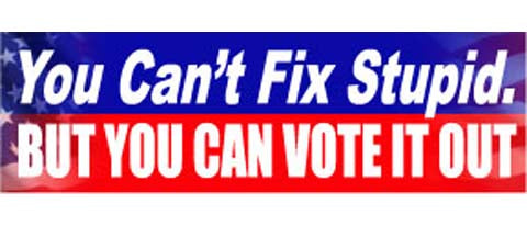 "You can't fix stupid, but you can vote it out - 3"" x 10""."