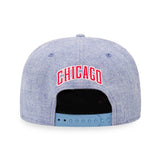 NBA Heather Chicago Bulls New Era 9Fifty Snapback Cap