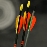 Arrows and target