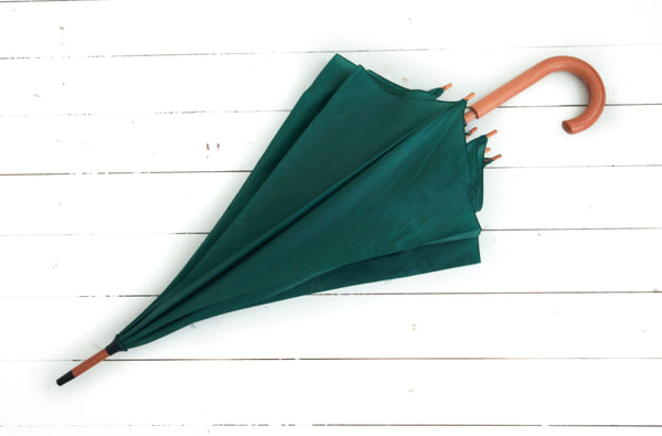 Green Party Umbrella