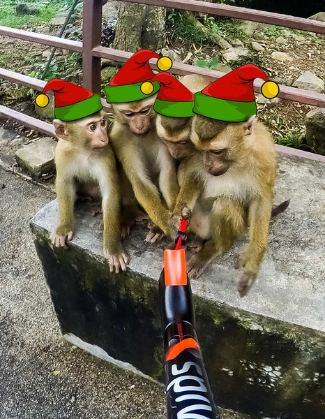 Monkeys in Thailand using a Spivo Stick wearing Santa hats
