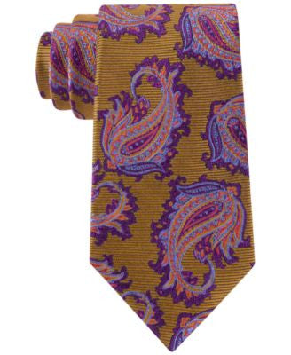 Peter Thomas Men's Party Paisley Classic Tie