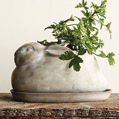 CEMENT RABBIT PLANTER WITH SAUCER