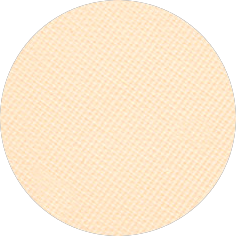 EYESHADOW 261 PEBBLES BBG Cosmetics