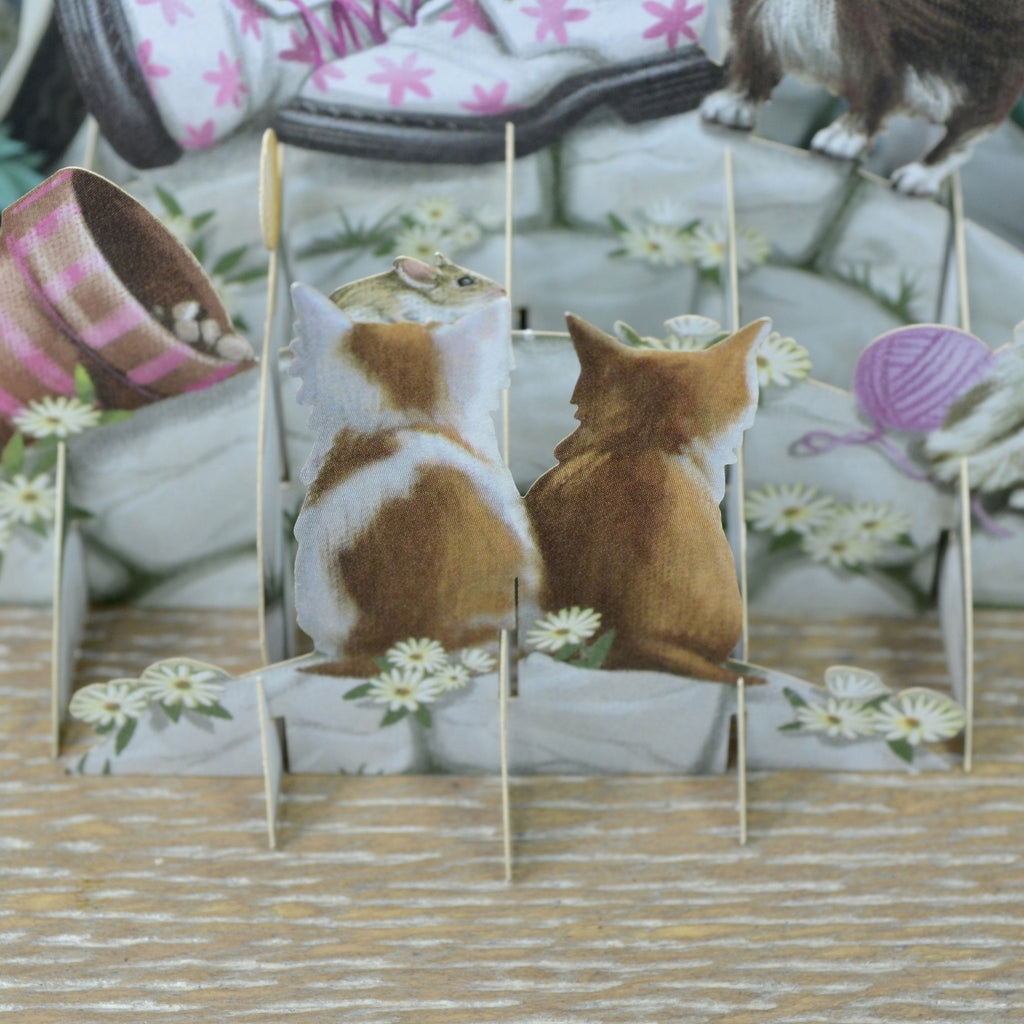 """Kittens"" - Top of the World Birthday Pop Up Greetings Card"