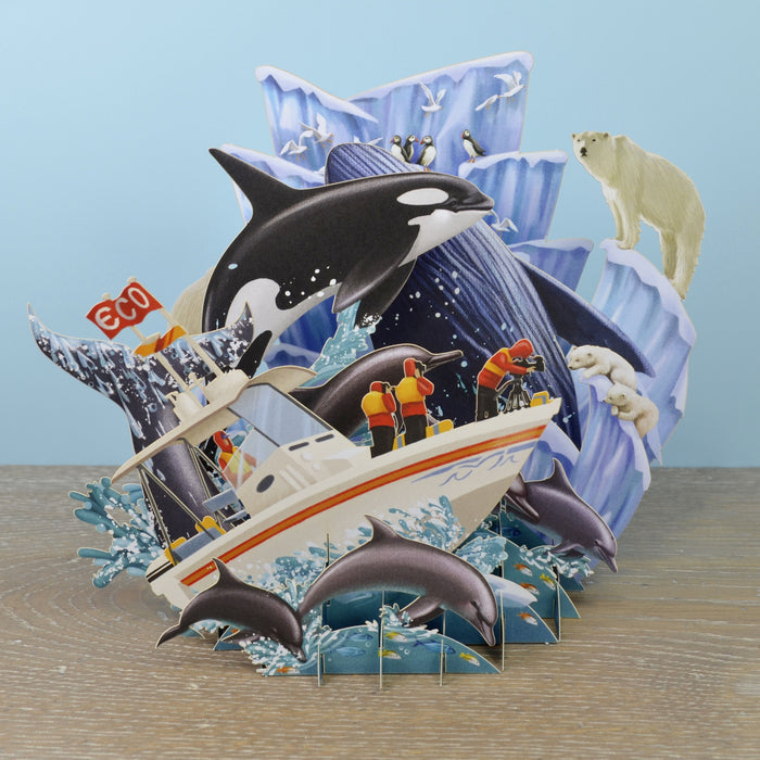 """Whales"" - Top of the World Pop Up Greetings Card"