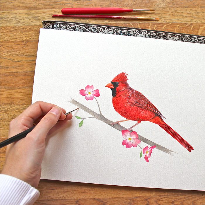 Cardinal on Dogwood Branch Painting