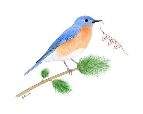 Joyful Eastern Bluebird Print