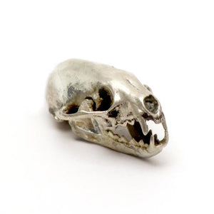 Silver American Pine Marten Animal Skull Pendant by Fire & Bone