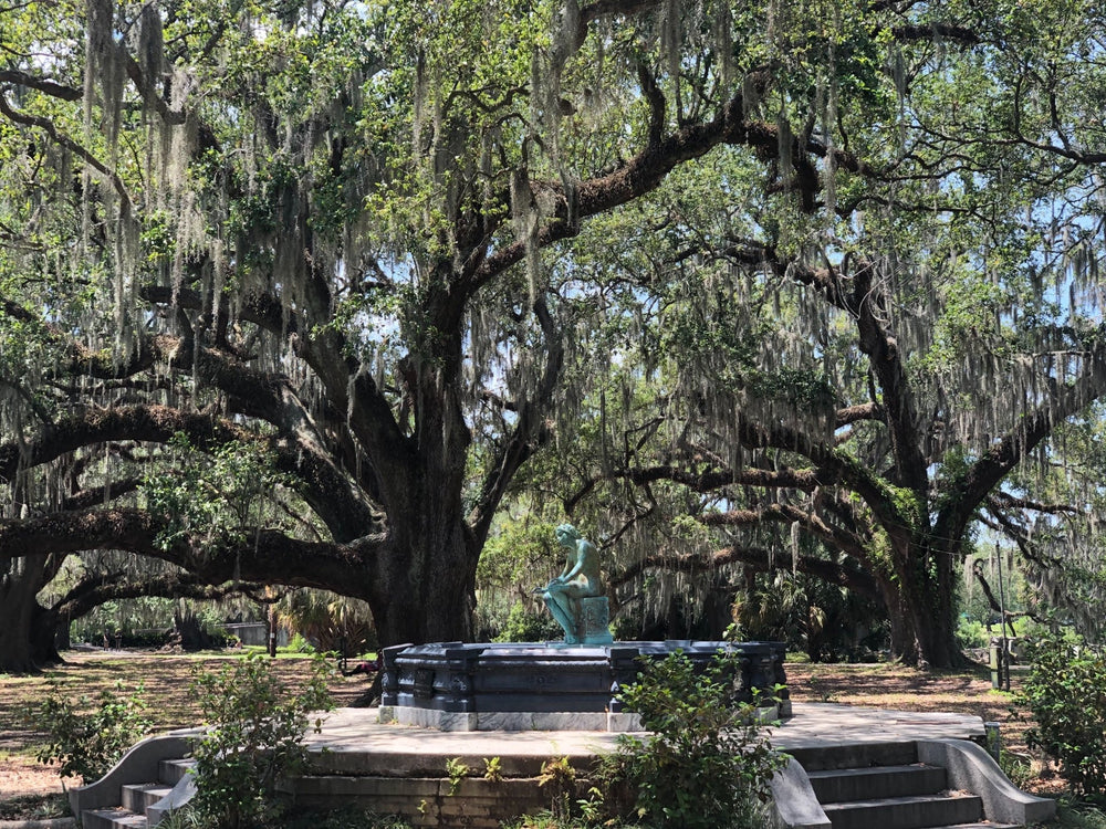 New Orleans City Park - Social distancing in beauty | Dirty Coast Press
