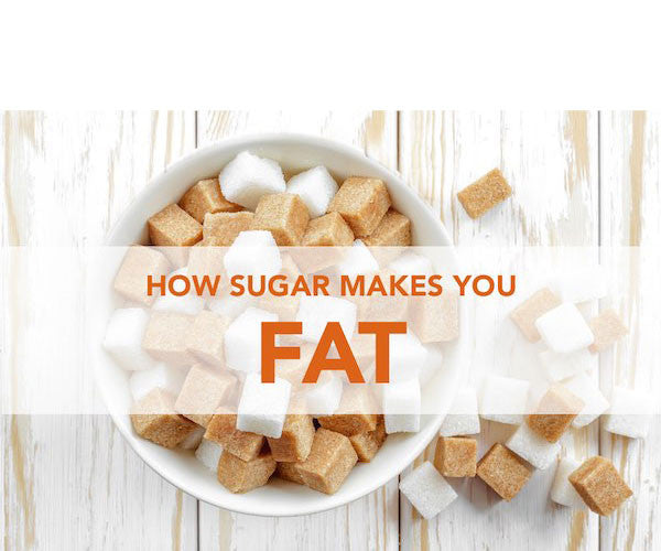 Why Sugar Makes You Fat:<br>The Processed, The White, The Highly Addictive.