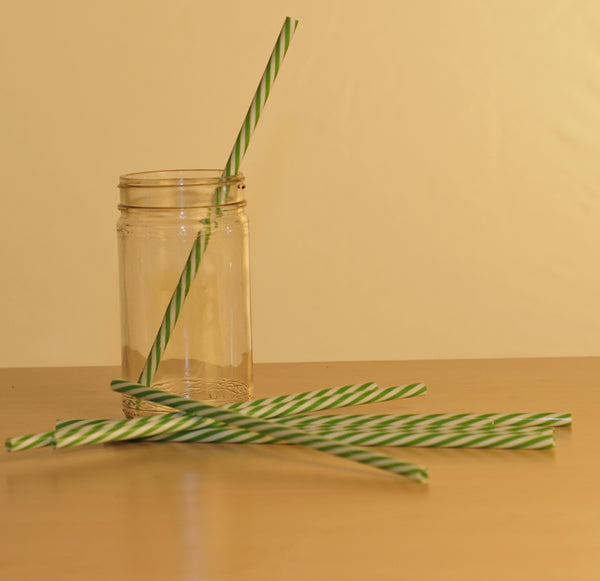 "9"" Resuable Striped Plastic Straw"