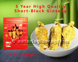 5年 精选短泡参 150克/ 5 Year High Quality Short-Block Ginseng 150g