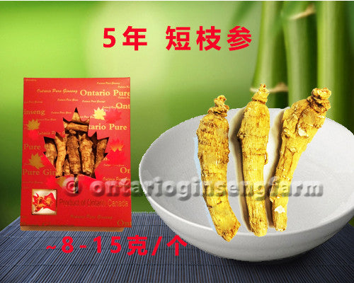 5年 短枝参 114克/ 5 Year Short-Branch Ginseng 114g