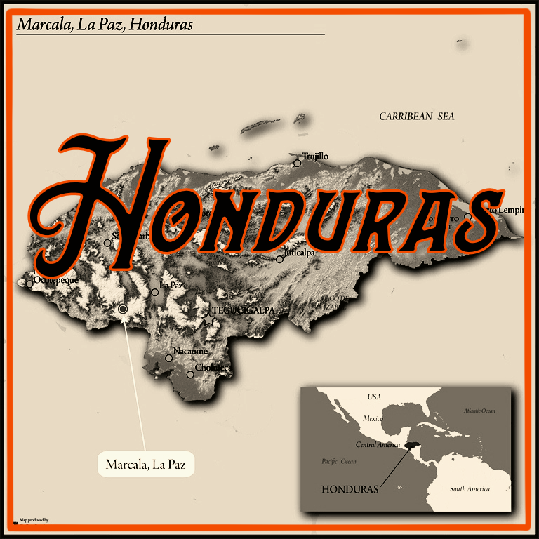 Honduras Comsa 16 oz - Local