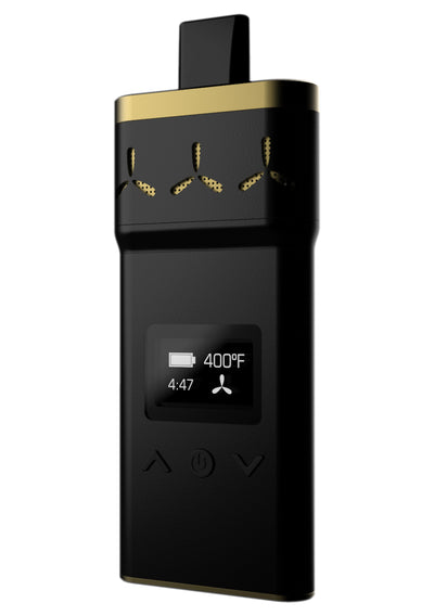 AirVape X SE | Black & Gold - Apollo AirVape
