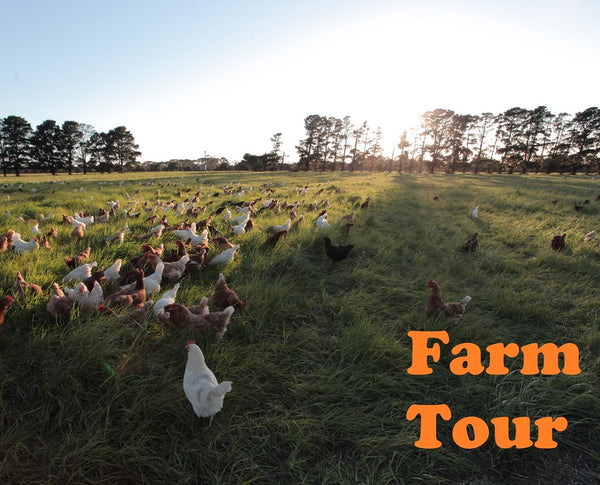 Farm Tour 19th November 2017