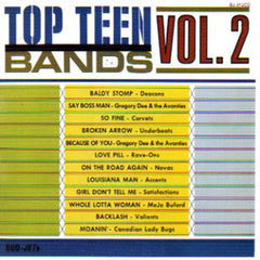 Top Teen Bands Vol. 1|Various Artists