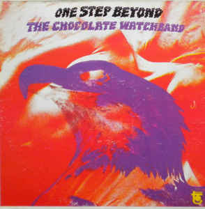 Chocolate Watchband|One Step Beyond