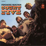 Count Five|Psychotic Reaction