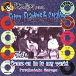 Tony The Tyger Presents Fuzz Flaykes and Shakes Vol. Six: Come On In To My World  - Various Artists