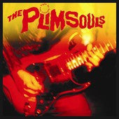 Plimsouls - One Night In America