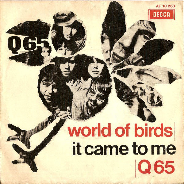 Q65|World Of Birds