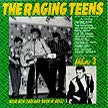 Raging Teens Vol. 3 - Various Artists