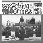 Searching in The Wilderness - Various Artists