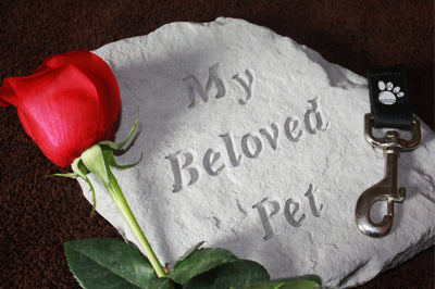 Beautiful Ways to Memorialize Your Pet