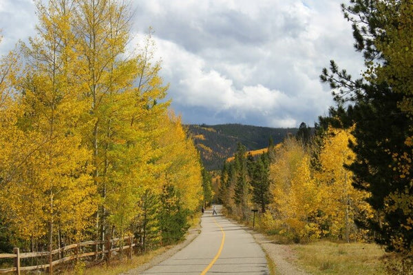 Fall Has Arrived What Does It Mean To You And Your Family The