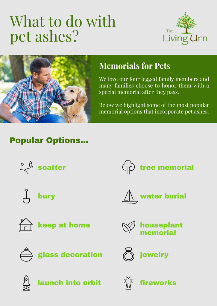 How Long To Get Dog Ashes Back From Cremation