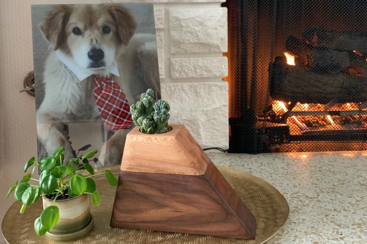 indoor planter urns for pets