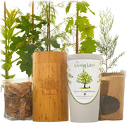 The Living Urn for Pets with a Voucher for a Tree