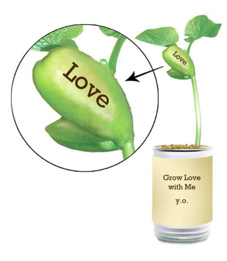 Grow Love With Me, Yoko Ono