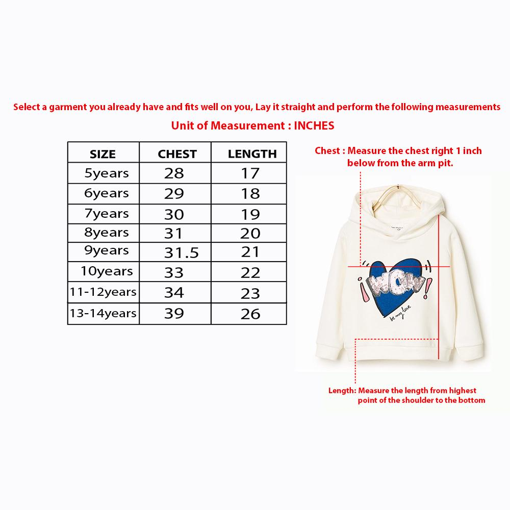 Boys Exclusive Round Neck Applique Embroidered Sweatshirt (30114)