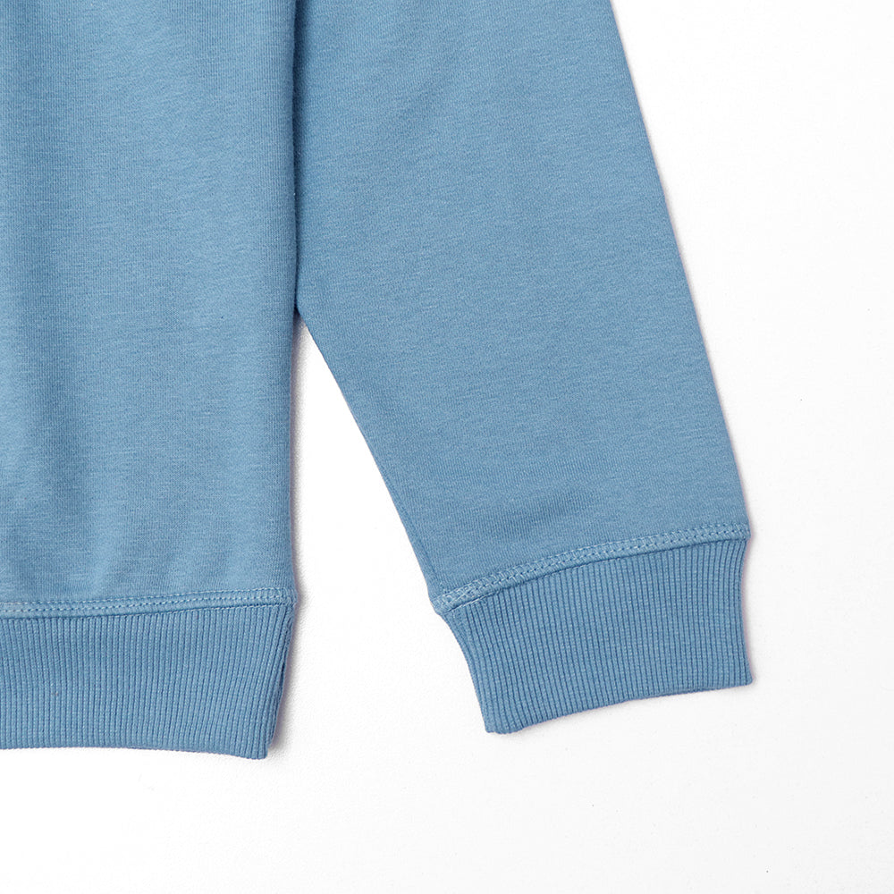 Men Cadet Blue Brushed Fleece sweatshirt (30011)