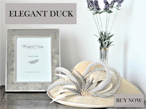 https://www.wingfielddigby.co.uk/collections/photo-frames/products/feather-glass-photo-frame-duck?variant=4832300302366&goal=0_81994bb4e3-3bbeb0e432-&mc_cid=3bbeb0e432&mc_eid=%5bUNIQID%5d