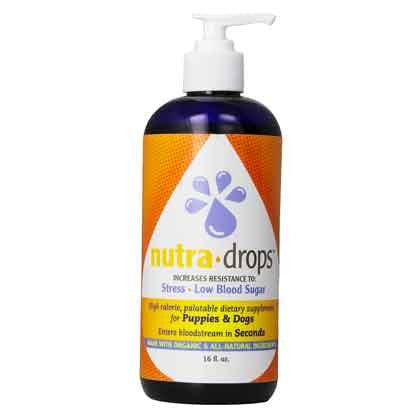 HEALTH EXTENSION NUTRA DROPS 16.8OZ