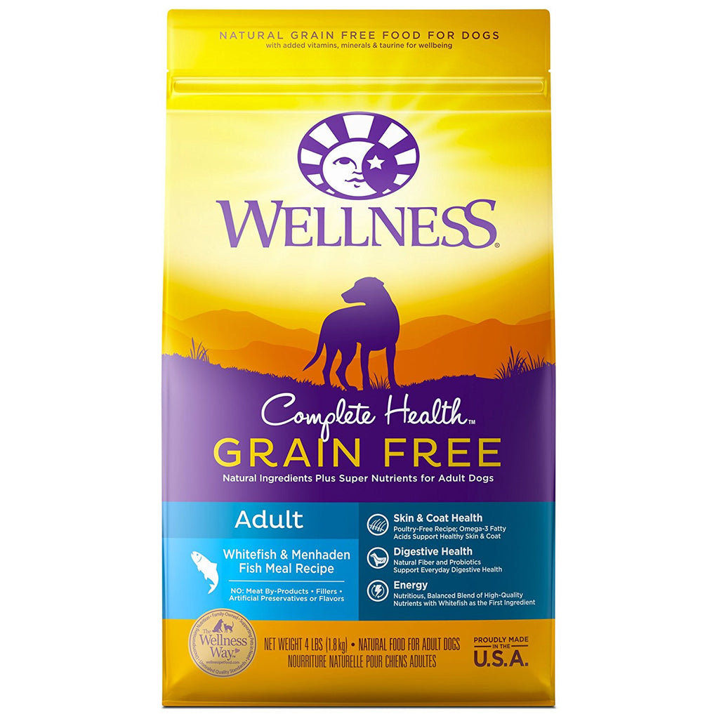WELLNESS DOG GRAIN FREE FISH 4LBS