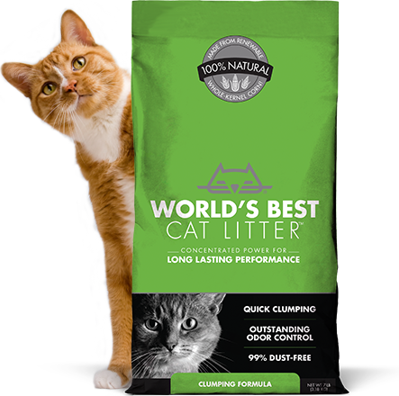 WORLDS BEST CLUMPING CAT LITTER 7LBS