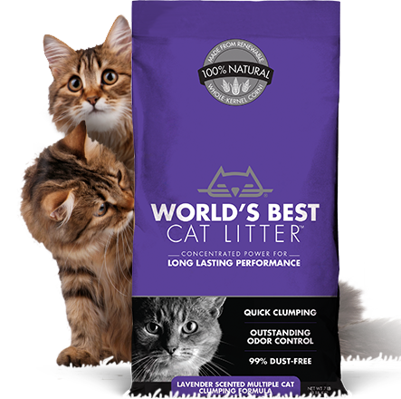 World's Best Lavender Scented Clumping Multiple Cat Litter, 28lbs