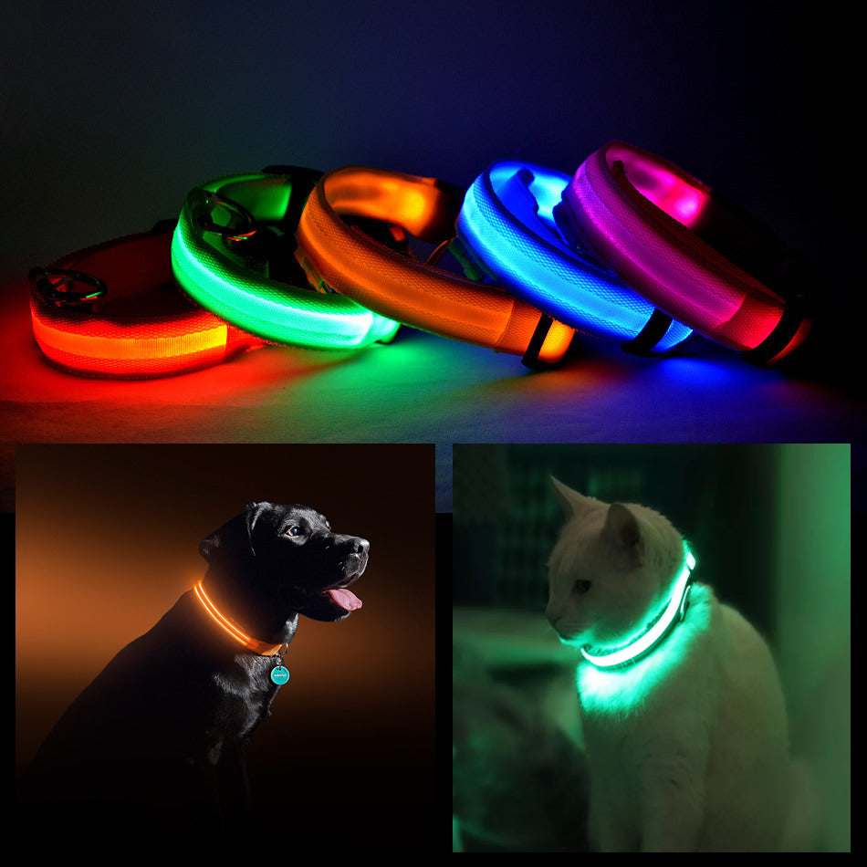 shopify-LED PET Safety Halo Style Collar-1