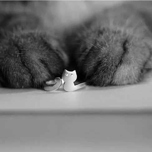 My Cute Kitten Fashion Ring In 925 Brushed Sterling Silver - VistaShops - 1