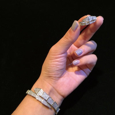 Charming Snake Bracelet And Ring Set